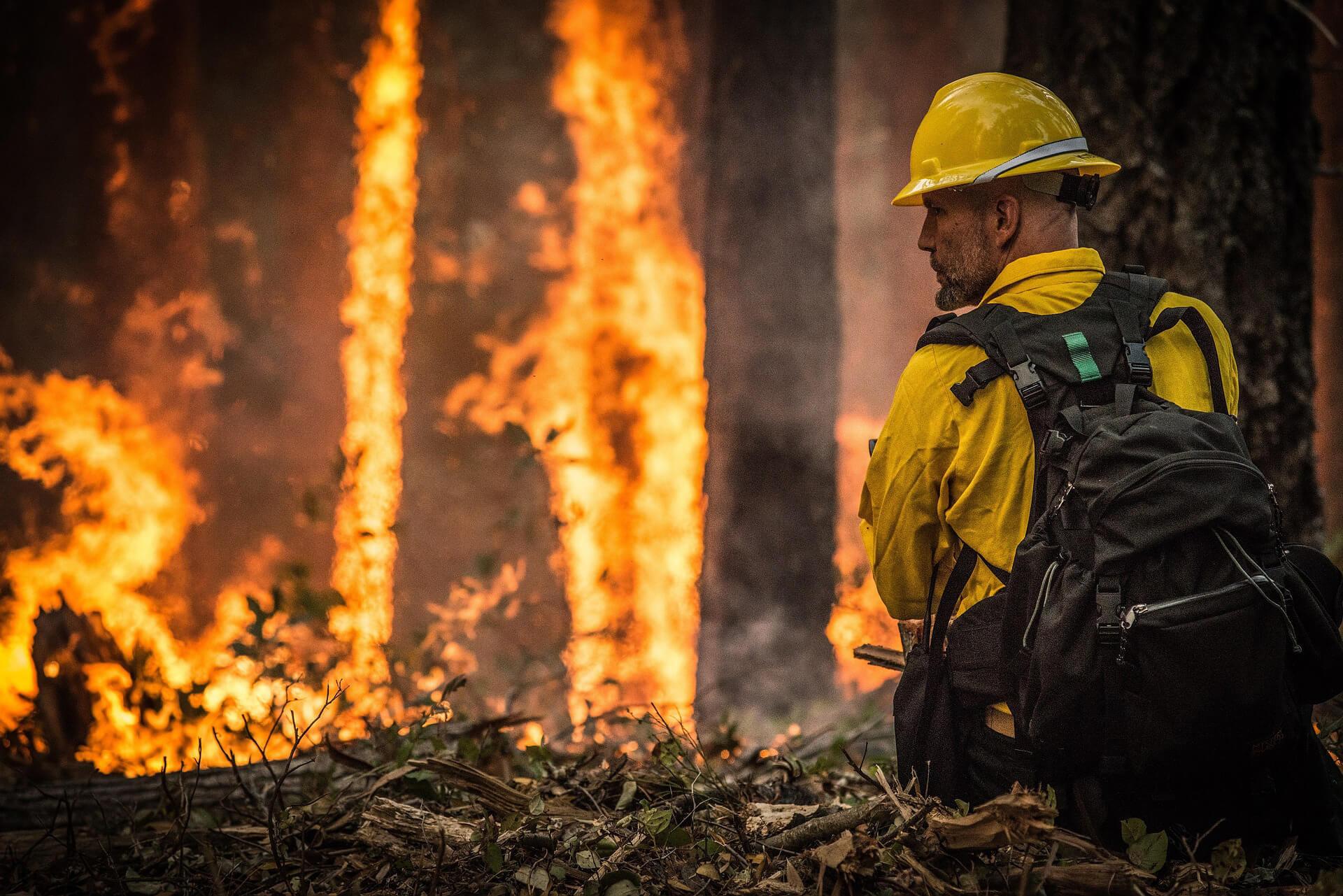 Wildfire Premium Tax Increase