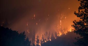 Wildfire & Insurance